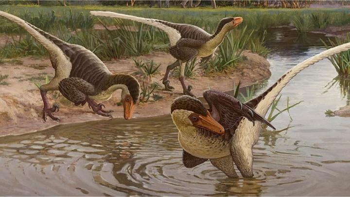 Быстрый и ловкий: найден один из последних хищных динозавров Земли