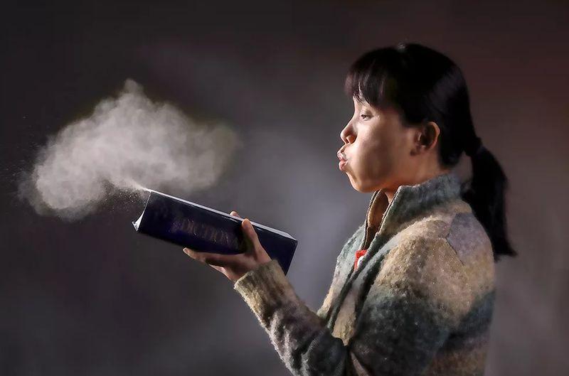 Что содержит и откуда появляется пыль?